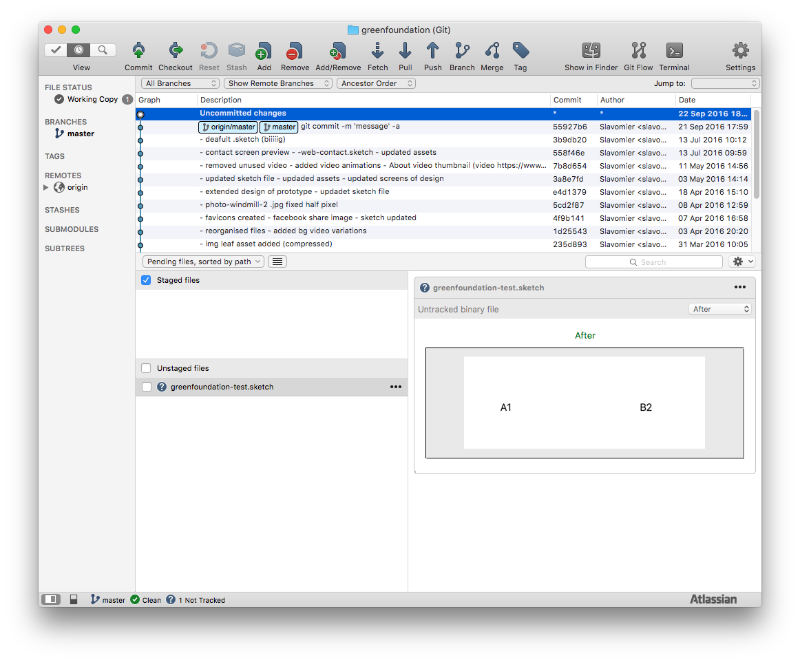 Sourcetree with preview