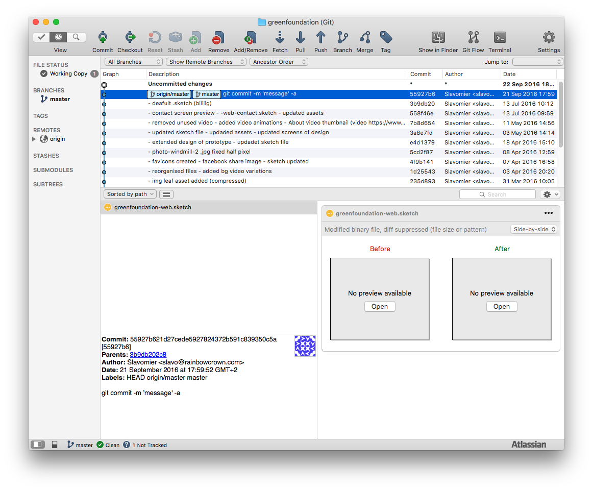 Sourcetree no preview